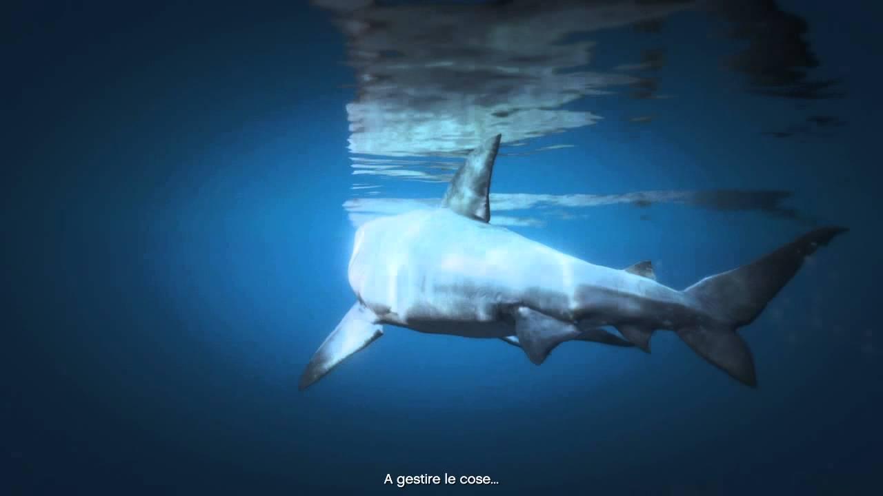Elicottero Squalo : Gta come diventare uno squalo ps youtube