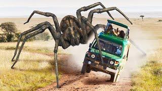 Dünyada Arazi Aracı Boyutunda Örümcekler Ortaya Çıksa Neler Olurdu