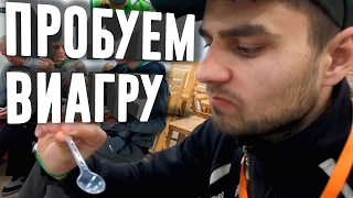 RUSSIAN IN EGYPT! HOW TO CHEATING TOURISTS IN EGYPT