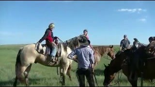 Echo Farm and Cattle LLC - Branding 2015