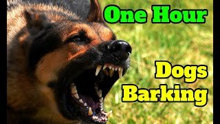 Dogs Barking for One Hour  barking sounds for 60 minutes of different breeds of dogs