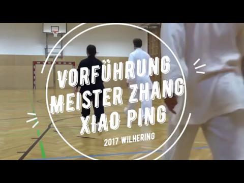 2017 Vorführung Meister Zhang Xiao Ping 武术健身