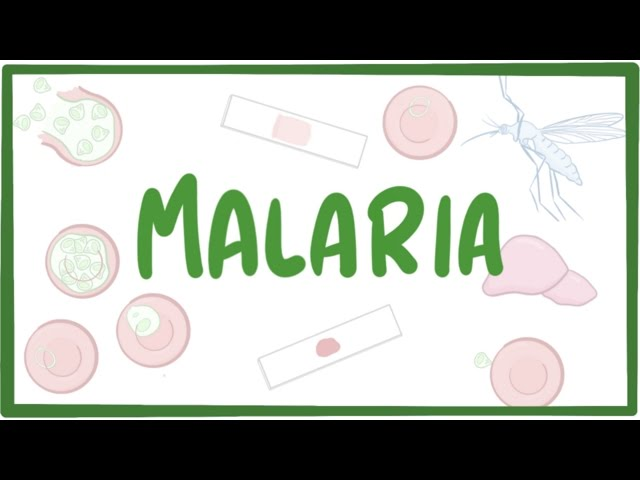 reasons behind malaria was discovered today