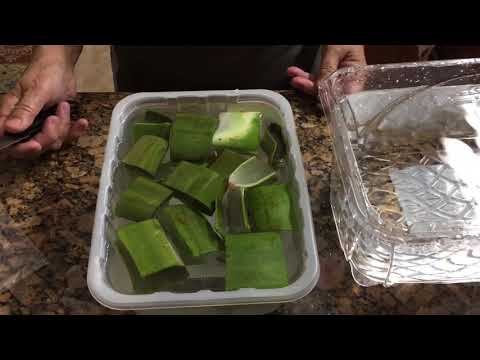 How to remove the poison from aloe leaves to make edible and for freezing