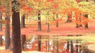 Tracy Chapman - Spring