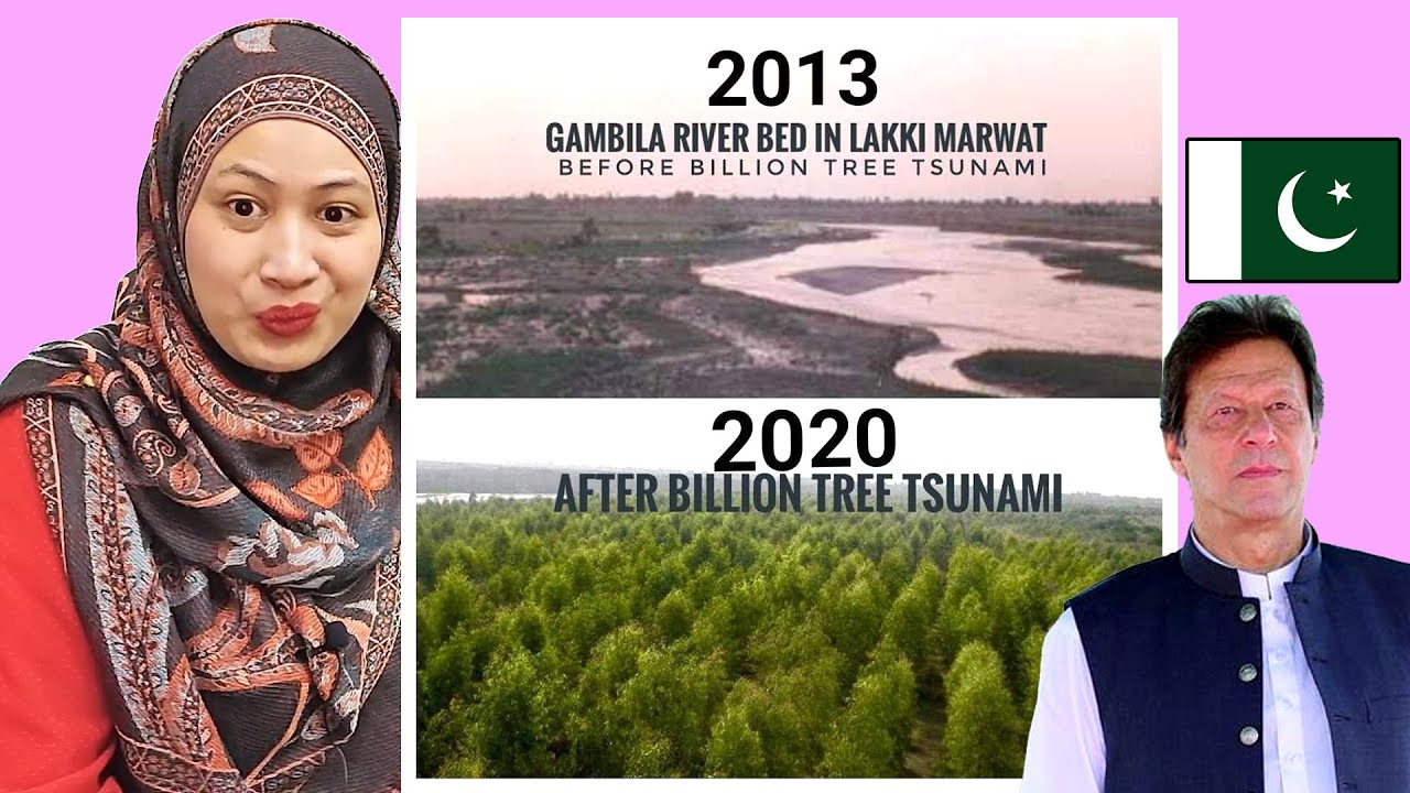 Imran Khan's Billion Tree Tsunami | Malaysian Girl Reactions