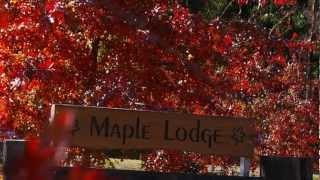 Maple Lodge, Wanaka, New Zealand - Luxury B&B Accommodation