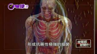 PM10點靈》「超級細菌」日漸強大 2050年每3秒恐1人致死 即時新聞 新聞 壹電視 NextTV   複製