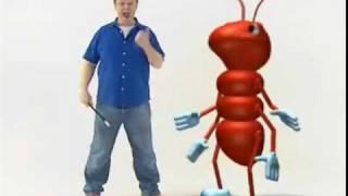 Justin Fletcher (Mr Tumble) in 'bee bright'