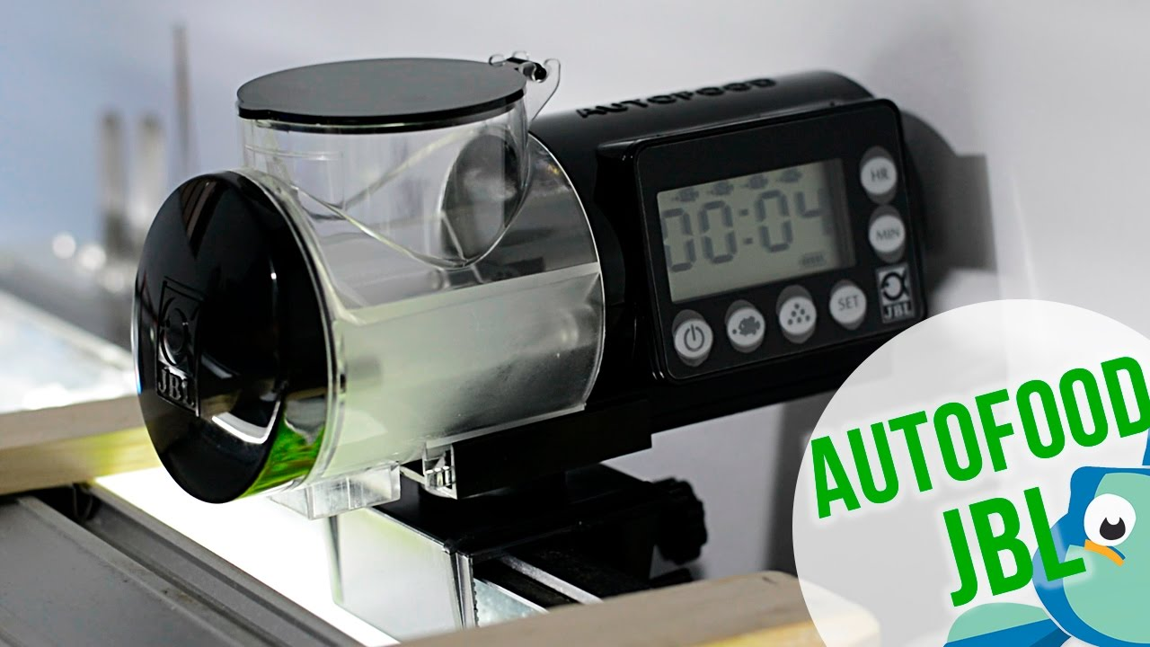 Autofood jbl comedero autom tico de calidad youtube for Comedero automatico para peces