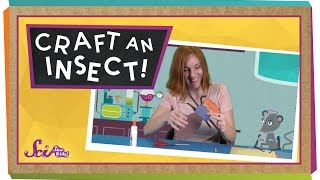 Craft An Insect!