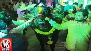 Haryana Bulls Attract People In Sadar Festival Celebrations | Hyderabad | V6 News