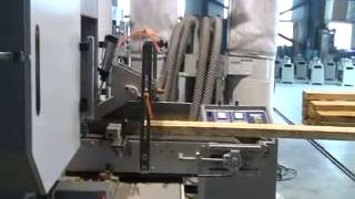 Sawyer Machinery Hbr-400-2(w7) 2 Heads Horizontal Band Saw (700mm Saw Wheel)