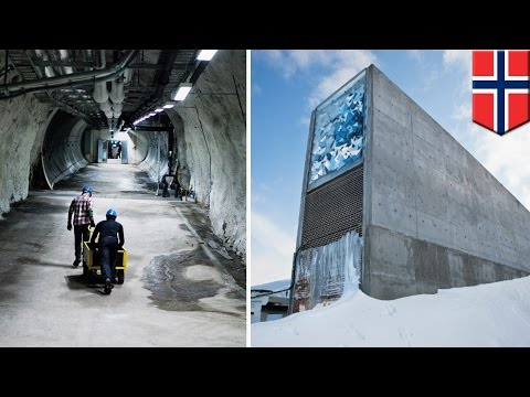 Doomsday seed vault: Global warming causes water to flood 'impregnable' Svalbard tunnel - TomoNews