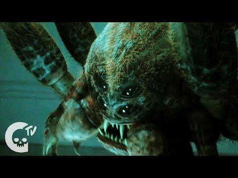 Octophobia | Short Horror Film | Crypt TV