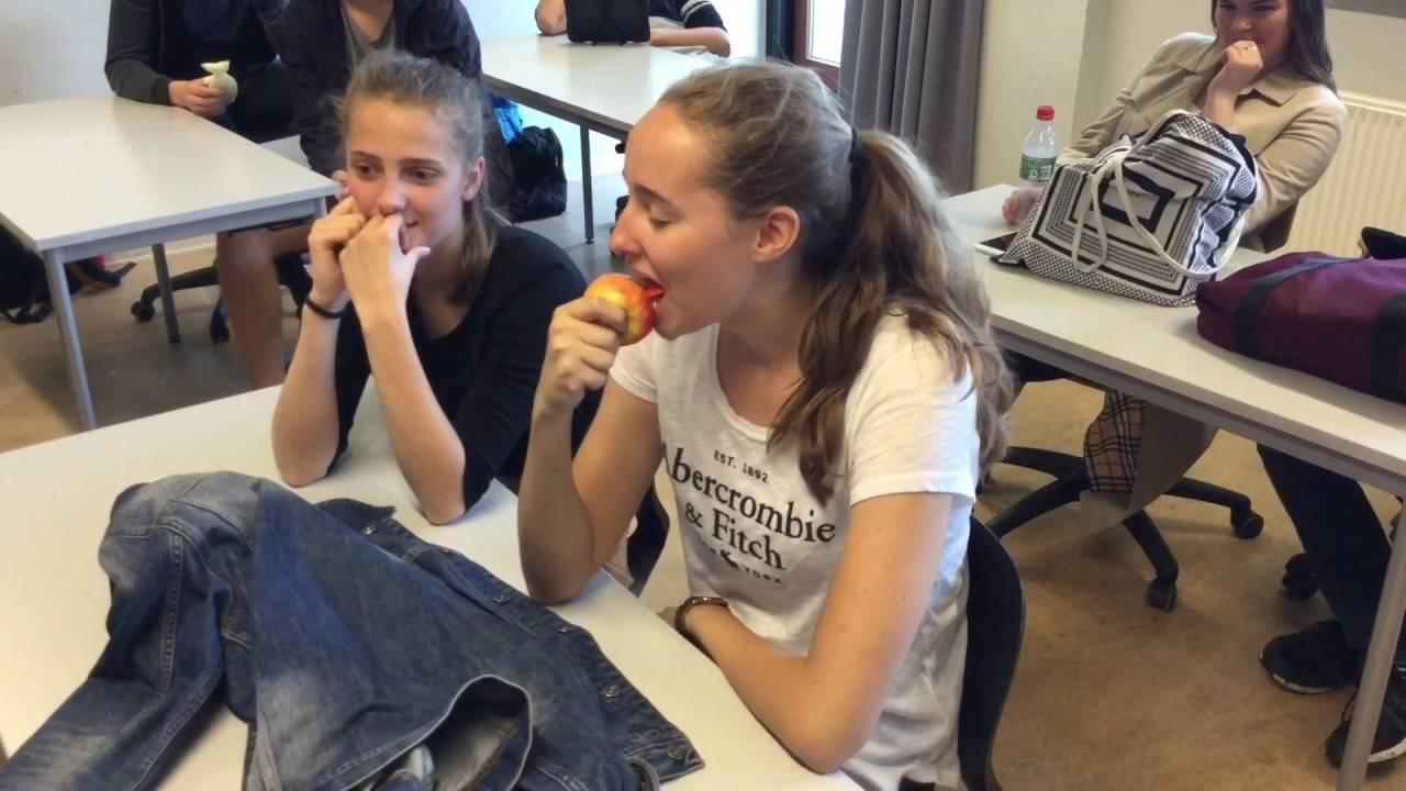 Molsskolens lærer parodiere