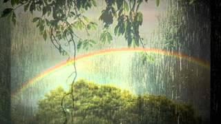 Bonnie Raitt - Rainy Day Man