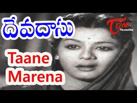 Devadasu Telugu Movie Songs | Thaane Maarenna Video Song | ANR | Savitri