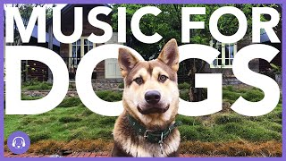 NEW! The BEST Soothing Music For Dogs! Ultimate Chillout Sounds for Dogs!