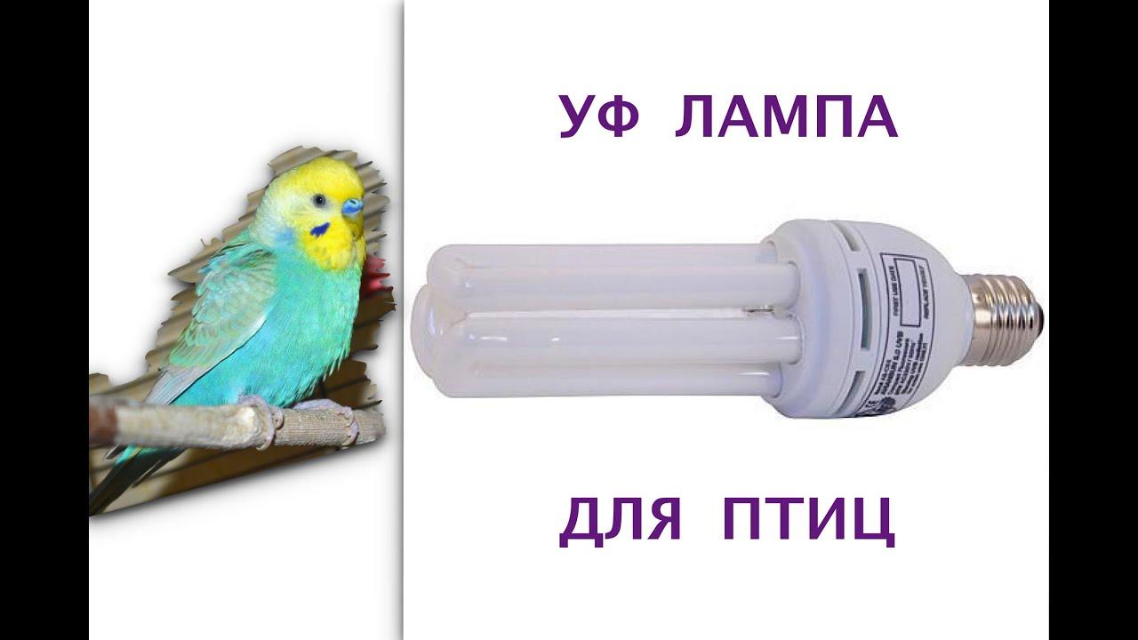 УФ LED Лампа kodi professional для гель лаков - YouTube