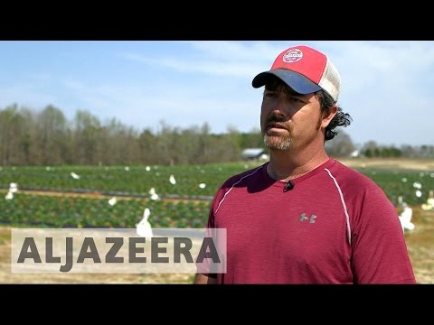What will US farmers do without immigrants?