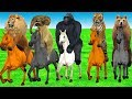 Wild Animals Riding on Colors Horses Cartoons for Kids | Horse Running Race with Animals in Forest