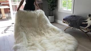 Mongolian fur Sheepskin Floor Rug