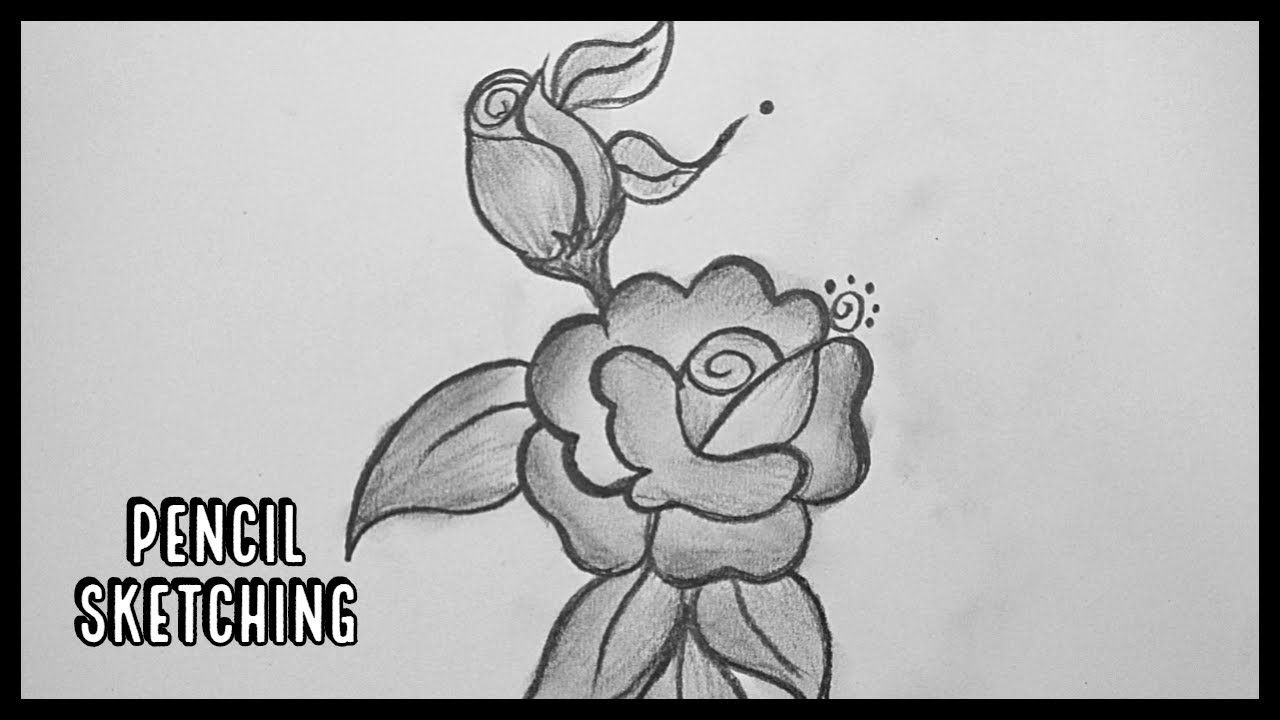 How To Draw A Rose Rose Pencil Drawing Pencil Sketching Pencil Shading Youtube