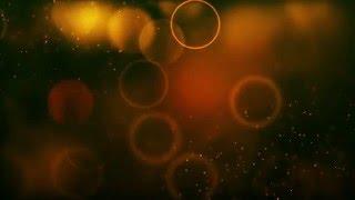wedding background video effects hd