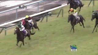菊花賞 歴代優勝馬
