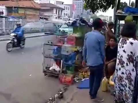 ペット市場-Jatinegara Pasar Pet-Pet Market-
