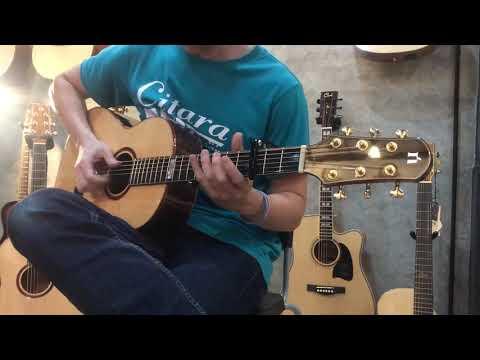 Natasha Guitar 003 Series Review By Citara House Of Guitar