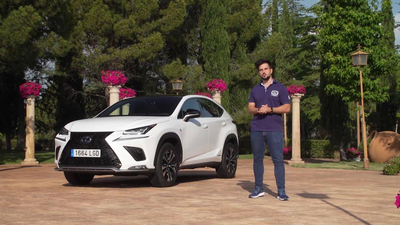 Lexus NX300h 2020 | Prueba | Test | Review en Español |Centímetros Cúbicos