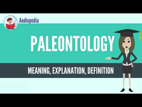 What Is PALEONTOLOGY? PALEONTOLOGY Definition & Meaning from YouTube · Duration:  3 minutes 31 seconds