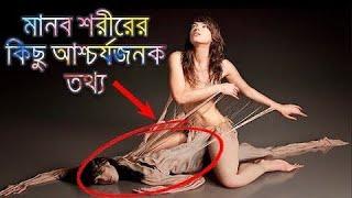 মানব শরীরের অজানা ও গোপন তথ্য   Facts about Human Body in Bangla   Durbeen