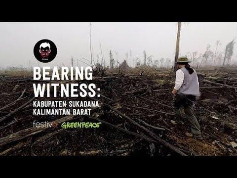 Free Download Bearing Witness: Dj Ninda Felina Mp3 dan Mp4