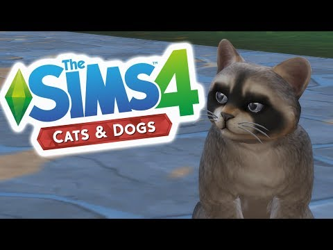 Sims Cats & Dogs - Creating CUTE PETS! #1