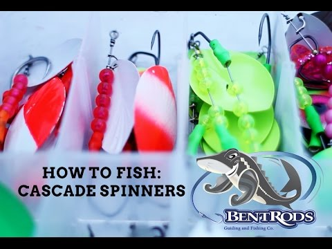 How To Fish Cascade Spinners For Chinook And Coho Salmon