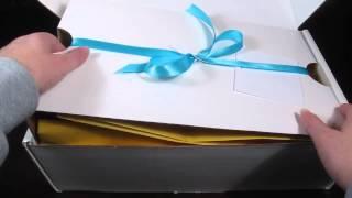 Austin Lloyd Toy Subscription Box 2-3 year old January 2014