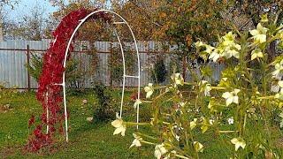 как сделать садовую арку своими руками