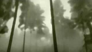 Gojira - Mandragore
