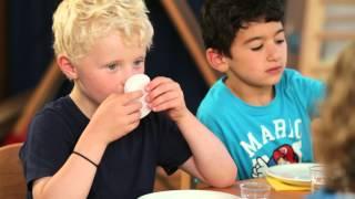 Forschen mit Fred – Naturwissenschaften im Kindergarten