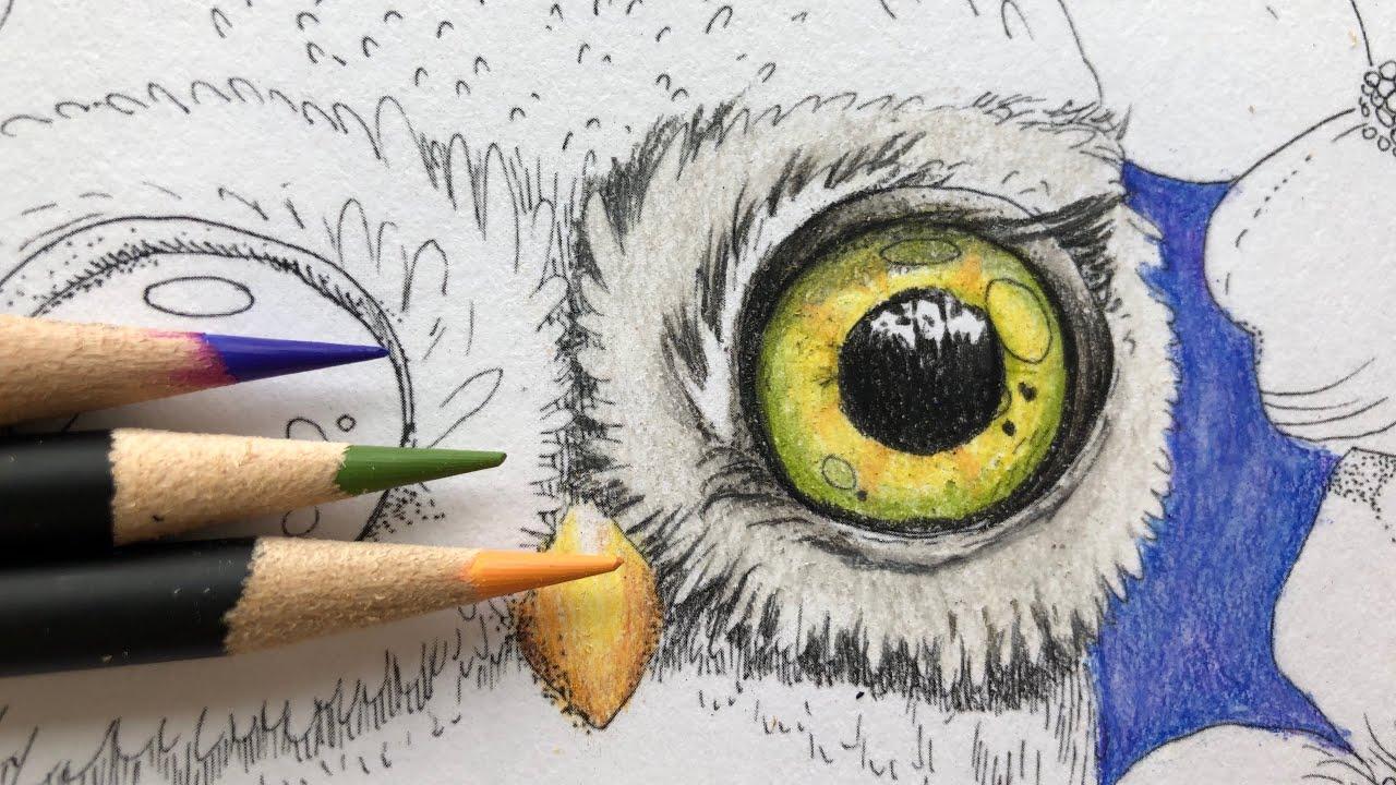 Castle Art Colored Pencil Review And Downloadable Color Chart