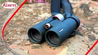 Kowa BD XD binoculars