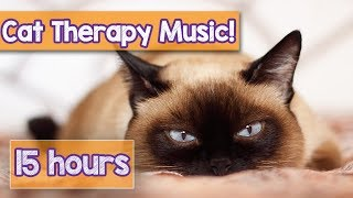 Relaxing Cat Music for Anxious Cats! Calm Your Cat with this Natural Anxiety Remedy for Ca ...