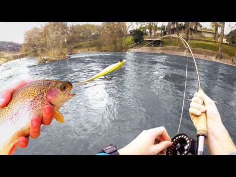 Fly Fishing The Guadalupe River For Texas Rainbow Trout, 4K