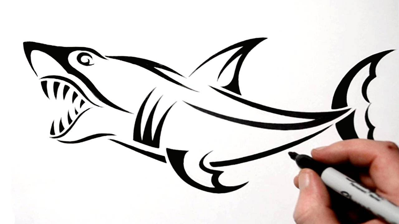 How To Draw A Tribal Shark Tattoo Design