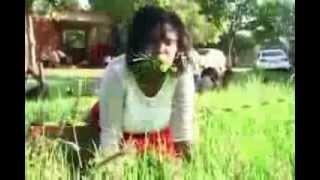 Pasteur sud Africain qui hypnotise ses fideles