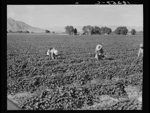 Lectures in History: Agricultural Labor & Organic Farming Preview