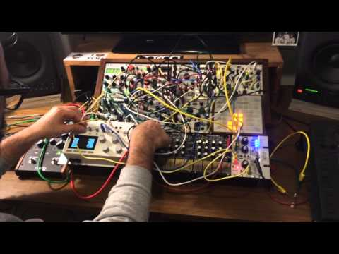 Monome Grid, Aleph & Eurorack patch w/ Cat (The Game of Life)